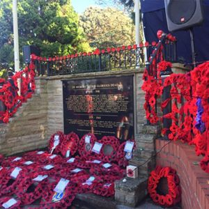 Westbury War Memorial with Poppy reefs laid