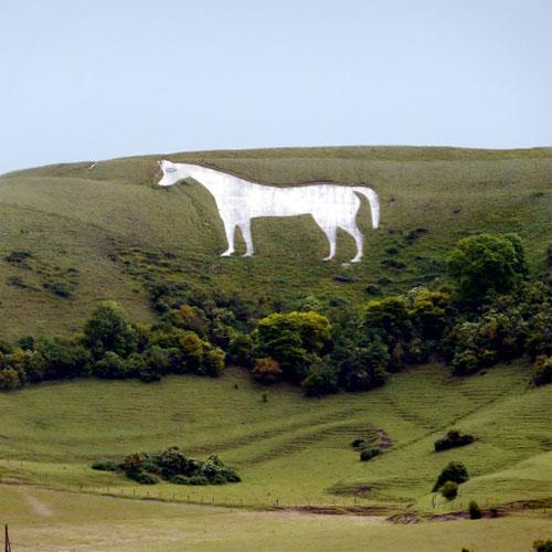 The White Horse on the hillside