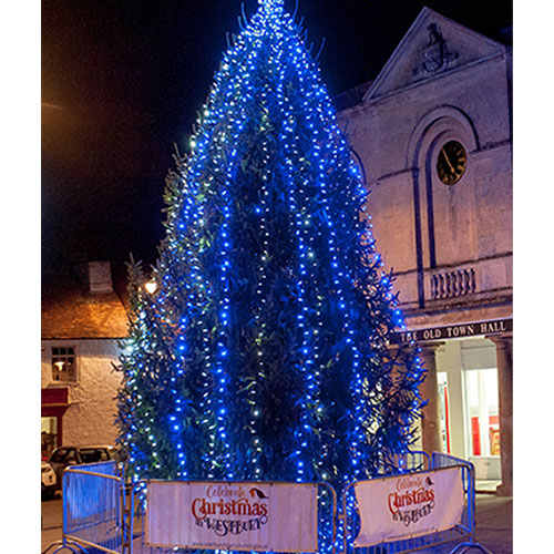 Westbury Christmas Tree 2019